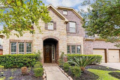Katy Single Family Home For Sale: 2810 Elm Chase Court