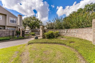 Sugar Land Condo/Townhouse For Sale: 2710 Grants Lakes Boulevard #E2