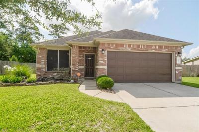Porter Single Family Home For Sale: 22465 Northfolk Valley Lane