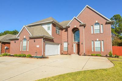 Katy Single Family Home For Sale: 6314 Alicia Way Lane