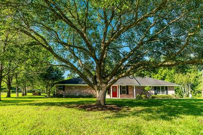 Brookside Single Family Home For Sale: 12307 Lack Road
