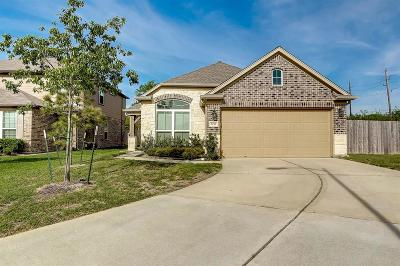 Houston Single Family Home For Sale: 5011 Leafy Brook Court