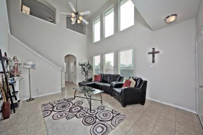 Houston Single Family Home For Sale: 9203 Ratama Creek Lane