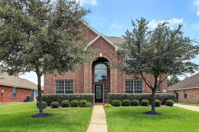 Houston Single Family Home For Sale: 17622 Quiet Loch Lane