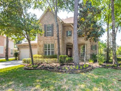 The Woodlands Single Family Home For Sale: 31 S Concord Valley Place