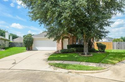 Katy Single Family Home For Sale: 21006 Welwick Court