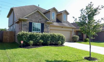 Galveston County, Harris County Single Family Home For Sale: 12510 Garden Gale Lane