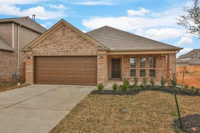 Fulshear Single Family Home For Sale: 32659 Timber Point Drive