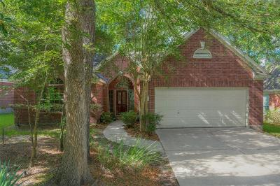 The Woodlands Single Family Home For Sale: 15 Painted Canyon Place