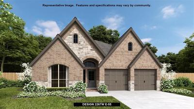 Fulshear Single Family Home For Sale: 4539 Hazel Bay Court