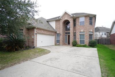 Houston Single Family Home For Sale: 9318 Morley Lake Drive
