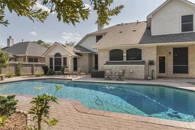 Harris County Single Family Home For Sale: 4207 Cedar Ridge Trail
