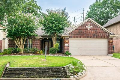 Sugar Land Single Family Home For Sale: 16834 Cobbler Crossing Drive E