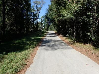 Conroe Residential Lots & Land For Sale: 00 Peach Creek Drive