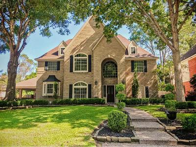 Houston Single Family Home For Sale: 2114 Mountain Lake Drive