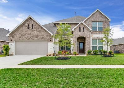 Tomball Single Family Home For Sale: 24506 Raven Cliff Falls Drive