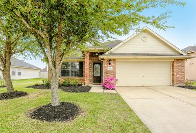 Pearland Single Family Home For Sale: 4308 Summer Lane
