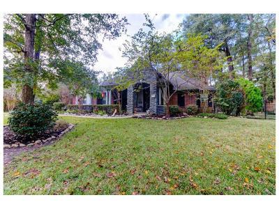 Conroe Single Family Home For Sale: 13234 Brookfield Lane