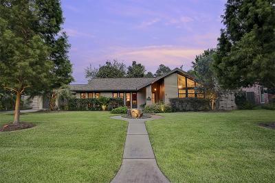 Houston Single Family Home For Sale: 10215 Piermain Drive