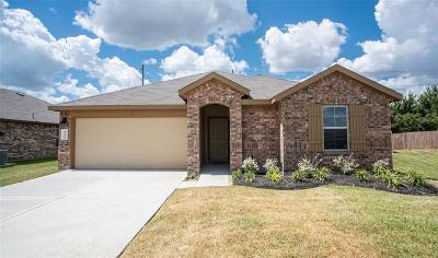 Rosenberg Single Family Home For Sale: 6306 Indigo Cliff Drive