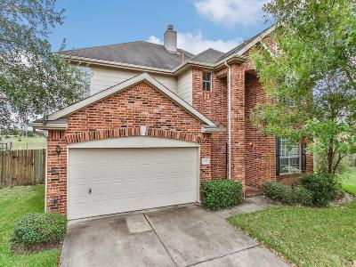 Sugar Land Single Family Home For Sale: 5522 Parkstone Court