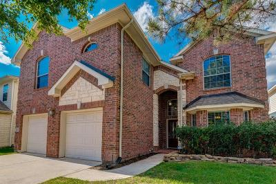 Houston Single Family Home For Sale: 16610 Greenbriar Point Lane