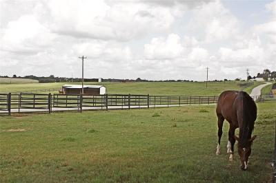 Austin County Country Home/Acreage For Sale: 10640 Fm 109