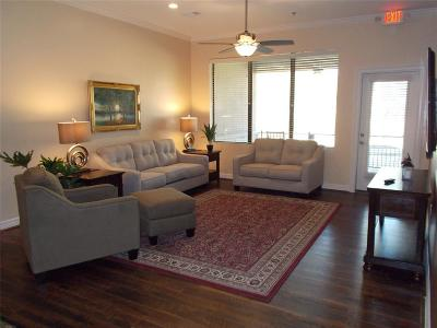 Spring, The Wodlands, Tomball, Cypress Rental For Rent: 6420 Cypresswood Drive #102