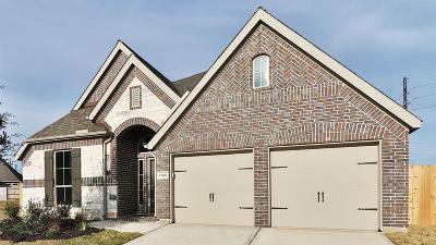 Shadow Creek Ranch Single Family Home For Sale: 13809 Sun Canyon Lane