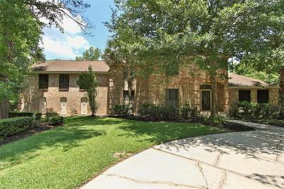 Houston Single Family Home For Sale: 1922 Grand Valley Drive