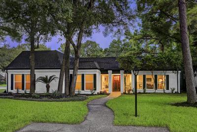 Houston Single Family Home For Sale: 14731 Bramblewood Drive