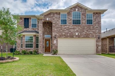 Tomball Single Family Home For Sale: 20210 Ray Falls Drive