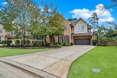 The Woodlands Single Family Home For Sale: 14 Angel Dove