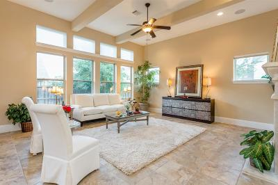 Sugar Land Single Family Home For Sale: 711 Weldon Park Drive