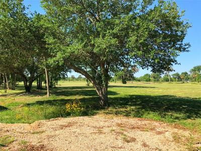 Brazoria Residential Lots & Land For Sale: County Road 461a