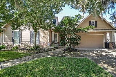 Sugar Land Single Family Home For Sale: 1531 Fairview Drive
