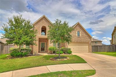Fulshear Single Family Home For Sale: 27706 Ashbrook Falls Ct