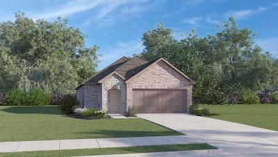 Conroe Single Family Home For Sale: 16427 Rosary Pea Place