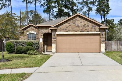 Tomball Single Family Home For Sale: 24422 Sandusky Drive