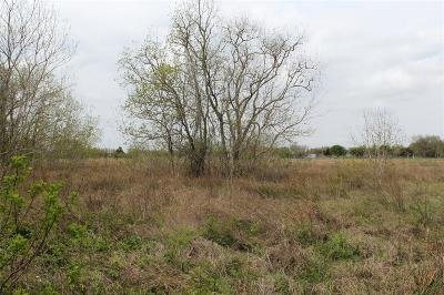 Bay City Residential Lots & Land For Sale: 920 Avenue F