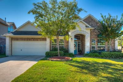 Spring Single Family Home For Sale: 3102 Lenora Springs Drive