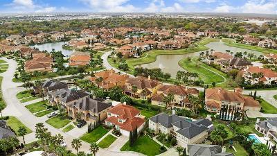Houston Single Family Home For Sale: 2206 Summerblossom Lane