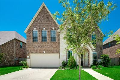 Pearland Single Family Home For Sale: 7230 Lake View Terrace Drive