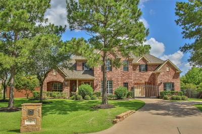 Spring Single Family Home For Sale: 6 White Meadow Court