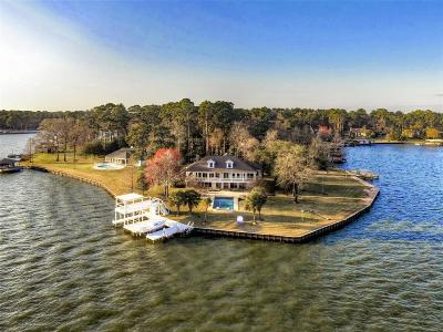 Montgomery Single Family Home For Sale: 1133 River Road