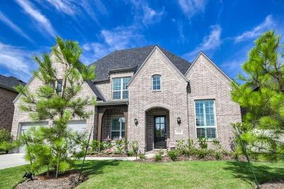 Conroe Single Family Home For Sale: 1034 Bat Hawk Court