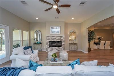 Houston Single Family Home For Sale: 834 Wycliffe Drive
