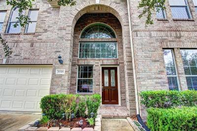 Fort Bend County Single Family Home For Sale: 20411 Bridge Manor Lane