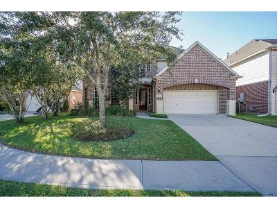 Katy Single Family Home For Sale: 6134 Calder Field Drive