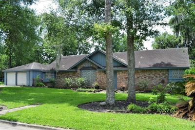 Houston Single Family Home For Sale: 226 Lake Harbor Lane